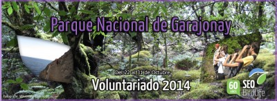 voluntariado garajonay